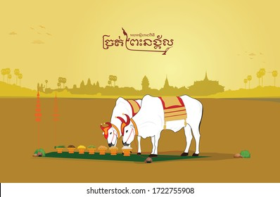 Cambodia royal ploughing ceremony golden
