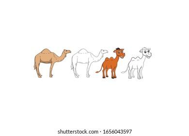 Camel Animal Cartoon Vector Illustration Bundle