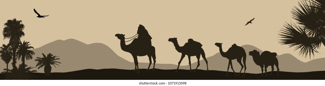 Camel caravan going through the desert, vector illustration
