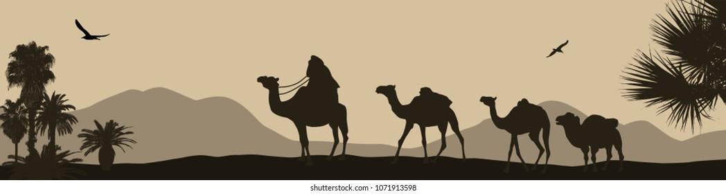 Camel caravan going through the desert, vector illustration