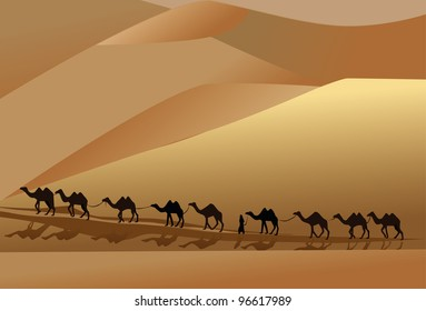 camel caravan going through the desert with a man
