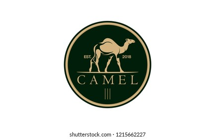 camel logo design template,vintage camel vector illustration