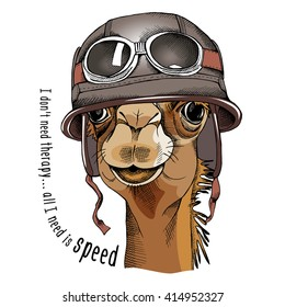 Camel portrait in a racer retro helmet. Vector illustration.