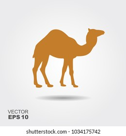 Camel silhouette vector illustration. Flat icon with shadow