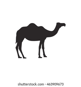 Camel silhouette vector illustration isolated on white background