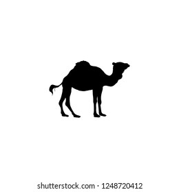 camel vector icon. camel sign on white background. camel icon for web and app