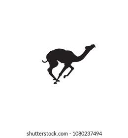 Camel vector silhouette. Camel logo design