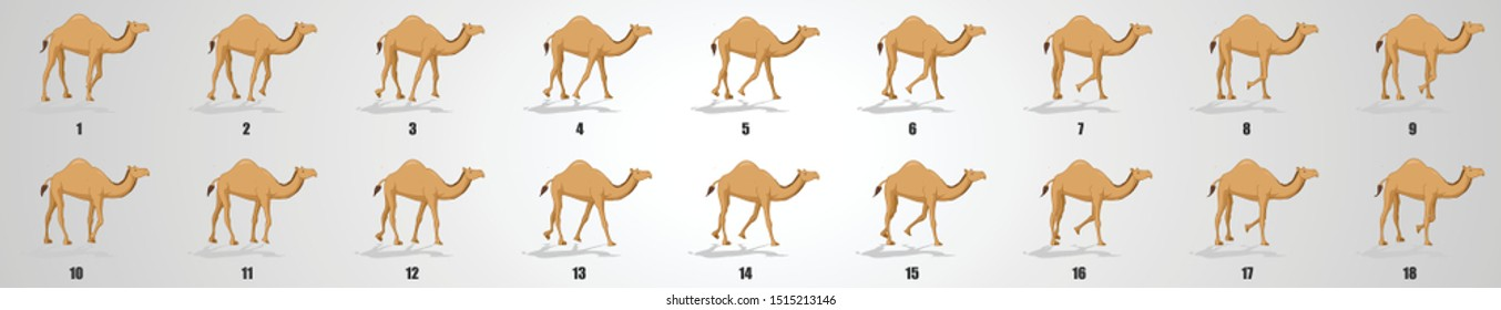 Camel walk cycle Animation sequence, animation frames