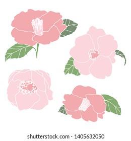 Camellia flower hand drawn illustration. Line-art flower drawing. Blooming detailed flower. Elements for design. Floral background.