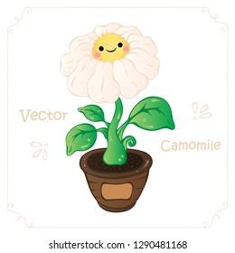 Camomile, daisy flower vector. Camomile, cute cartoon daisy flower vector illustration for nursery, child book, game. Doodle camomile, daisy. Kawaii cartoon camomile, daisy flower vector illustration