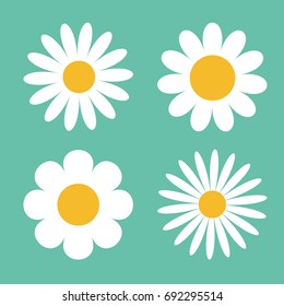 Camomile icon set. White daisy chamomile. Cute round flower plant collection. Love card symbol. Growing concept. Flat design. Green background. Isolated. Vector illustration