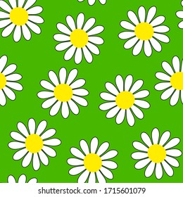 Camomile seamless vector pattern. White flowers with yellow centers isolated on green background. Flower ornament. Cute plant illustration for wallpaper, wrapping paper, clothing, prints, packaging
