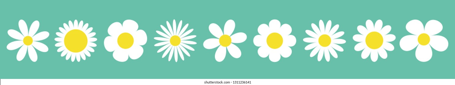 Camomile set line. White daisy chamomile icon. Cute round flower plant collection. Love card symbol. Growing concept. Isolated. Green background. Flat design. Vector illustration