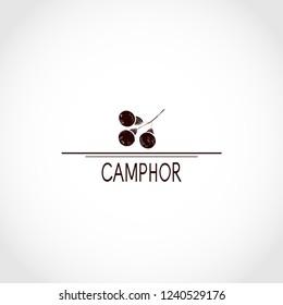 Camphor. Plant. Fruit.  Black silhouette on white background. logo, emblem.
