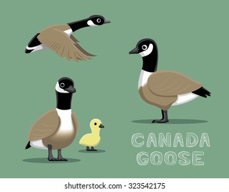 Canada Goose Cartoon Vector Illustration