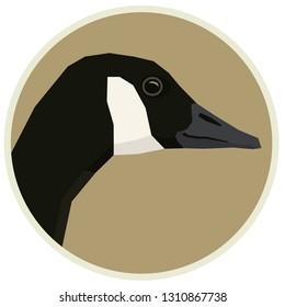 Canada goose Vector illustration of bird in round frame set
