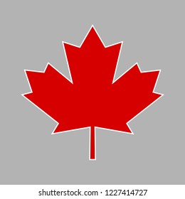Canada leaf. Red maple leaf