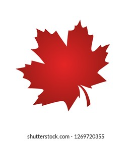 Canada vector symbol,Maple leaf vector icon.Red - Vector,illustration.