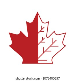 A Canadian maple leaf symbol with half in outline form in vector formt.