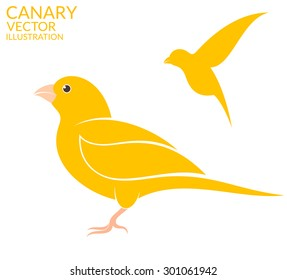 Canary bird. Vector illustration