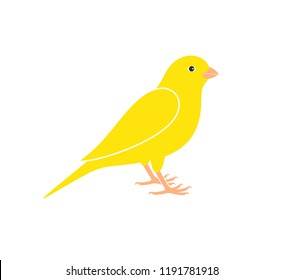 Canary logo. Isolated canary on white background. EPS 10. Vector illustration