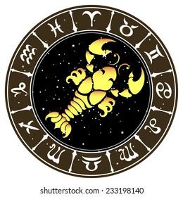 the Cancer zodiac sign , vector illustration