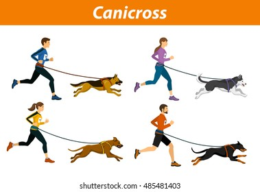 Canicross Outdoor Training with Dogs. Men, women, group of people running pulled by dogs workout isolated vector illustration