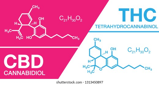 Cannabidiol (CBD) cannabis molecule and Tetrahydrocannabinol (THC) cannabis molecule. cannabis or hemp or marijuana chemical formula.