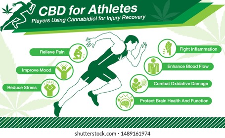 Cannabidiol CBD used for Athletes.Health benefits of Cannabidiol CBD from cannabis, hemp, marijuana, weed effect on body Runner or players. Green vector infographic on white background.