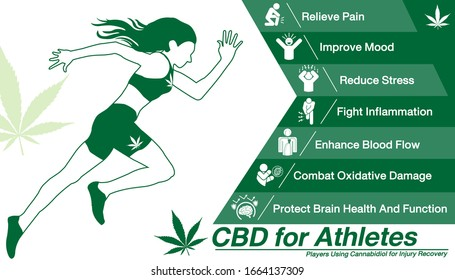 Cannabidiol CBD used for Athletes.Health benefits of Cannabidiol CBD from cannabis, hemp, marijuana, weed effect on body Runner or players. vector infographic on white background.
