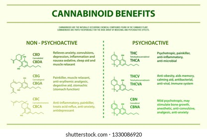 Cannabinoid Benefits horizontal infographic illustration about cannabis as herbal alternative medicine and chemical therapy, healthcare and medical science vector.