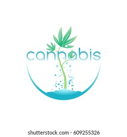 Cannabis emblem, logo for medical marijuana shop, vector illustration.