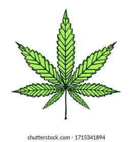 Cannabis green leaf isolated on white. Vector doodle freehand cartoon hand drawing marijuana grass or ganja plant. Shape or silhouette herbal nature symbol.
