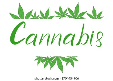 Cannabis hand lettering text and green leaves of marijuana, vector eps10