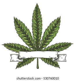 Cannabis leaf. Hand drawn isolated vector illustration.