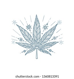 Cannabis leaf. Marijuana leaf hand drawn vector illustration. Cannabis sketch drawing.