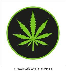 Cannabis leaf on a black background