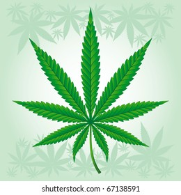 Cannabis / Marijuana / Hemp - detailed leaf.