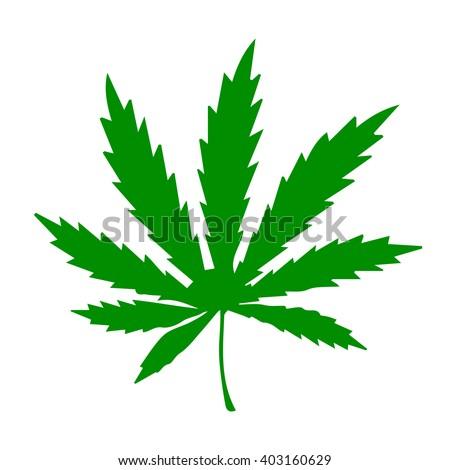 cannabis marijuana hemp leaf vector illustration stock vector rh shutterstock com Hemp Leaf Drawing Industrial Hemp Leaf