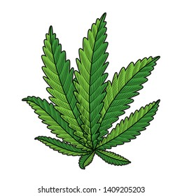cannabis plant leafs nature icon