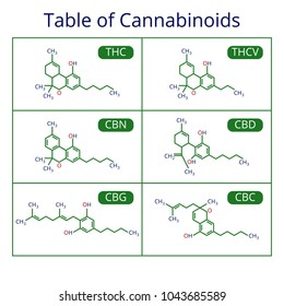 Cannabis skeletal cbd formula. Marijuana molecules vector set. Cannabis formula molecular, chemistry structure cannabinoid illustration
