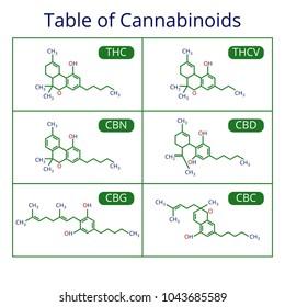 Cannabis skeletal cbd formula. Marijuana molecules vector set. Cannabis formula molecular, chemistry structure cannabinoid illustration