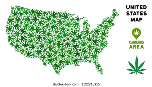 Cannabis USA map collage of marijuana leaves. Narcotic addiction template. Vector USA map is created from green cannabis leaves. Abstract area plan in green color shades.