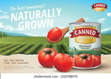 Canned tomato ads with fresh vegetables on green field in 3d illustration