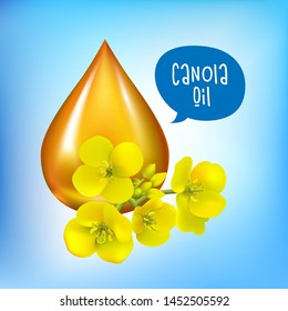 Canola seeds and flowers, Rape oil. Brassica napus. Seamless vector pattern. Isolated vector illustration on white background.