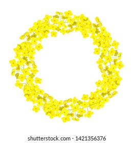 Canola wreath Rapeseed garland blossom flowers card. template copy space text. Flowering colza chaplet. Brassica napus crown. Blooming yellow rape. For decoration, wrapping, advertising, invitations