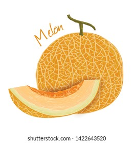 Melon Draw Hd Stock Images Shutterstock New users enjoy 60% off. https www shutterstock com image vector cantaloupe melon fruit doodle drawings vector 1422643520