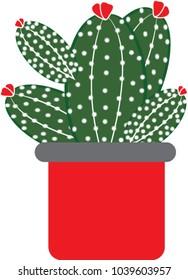Cantus vector green , cartoon
