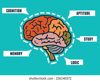 Capabilities of the human brain. Mind map and infocharts - vector illustration