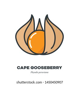 Cape gooseberry or physalis fruit icon, outline with color fill style vector illustration, fruit with husk
